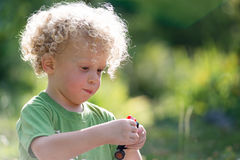 Little blond boy playing with a small car Stock Images