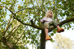 Little blond child girl climbing on a apple tree in the garden royalty free stock images