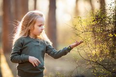 Little girl is holding a flowering twig in the spring. Little blond girl is holding a flowering twig in the spring royalty free stock images