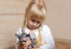 Little blond girl holding a sphynx kitten Stock Photo