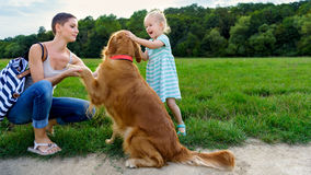Little blond girl smiling and hugging her cute pet dog golden retriever Stock Photography
