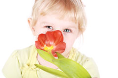 Little blond girl sniffing tulip Stock Photos