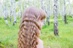 Little girl in the forest. Little blond girl with wavy hair in the forest Royalty Free Stock Photos
