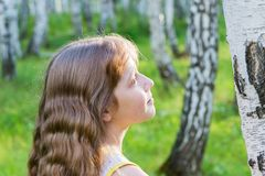 Little girl in the forest. Little blond girl with wavy hair in the forest Stock Photo