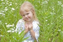 Little blond girl in wild daisies Royalty Free Stock Image