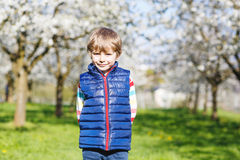 Little blond kid boy having fun on blooming cherry garden Stock Images
