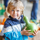Little blond kid boy holding green pumpkin Stock Photos