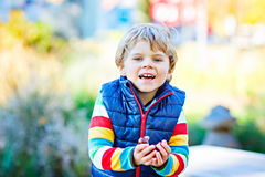 Little blond kid boy playing with chestnuts in park. Royalty Free Stock Image