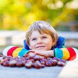 Little blond kid playing with chestnuts in autumn park. Stock Images