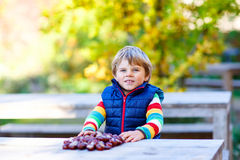 Little blond kid playing with chestnuts in autumn park. Royalty Free Stock Photography