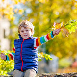 Little blond kid playing with yellow leaves in autumn park. Stock Image