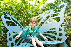 Little blond preschool kid boy discovering flowers and butterflies at botanic garden. Schoolchild interested in biology. Active educational leisure with kids royalty free stock photo