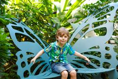 Little blond preschool kid boy discovering flowers and butterflies at botanic garden. Schoolchild interested in biology. Active educational leisure with kids royalty free stock photos
