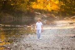 Little blonde boy in green glasses playing on the riverside. Autumn in the yellow forest stock photos