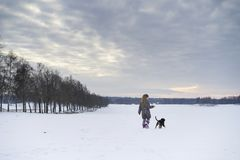 Little blonde caucasian Swedish girl playing with dog in winter landscape Royalty Free Stock Photo