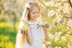 Little blonde girl in blossom apple tree garden Stock Photos