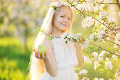 Little blonde girl in blossom apple tree garden. Beautiful little blonde girl in blossom apple tree garden on beautiful spring day with basket of green apples Stock Photo