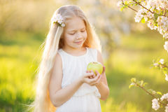 Little blonde girl in blossom apple tree garden. Beautiful little blonde girl in blooming apple tree garden on beautiful spring day with basket of green apples Stock Photography