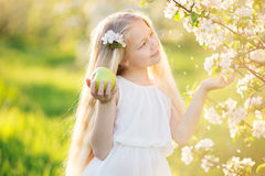 Little blonde girl in blossom apple tree garden. Pretty little blonde girl in blooming apple tree garden on beautiful spring day with basket of green apples Royalty Free Stock Image