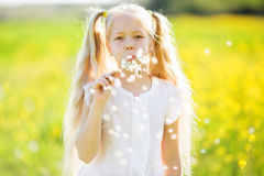 Little blonde girl blowing dandelion Royalty Free Stock Photo