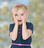The little blonde girl Stock Photography