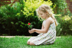 Little blonde girl holding young flower plant in hands on green background Stock Photos