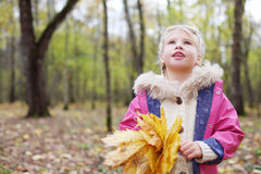 Little blonde girl with maple leaflets looks up. Stock Images