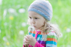 Little blonde girl wearing striped knitted hat blowing on white puffy dandelion seed head at her hand Royalty Free Stock Image