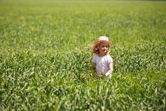 Little blonde girl in a wheat field Stock Image