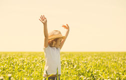 Little blonde girl in a wheat field Royalty Free Stock Photo