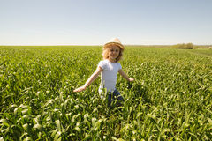 Little blonde girl in a wheat field Royalty Free Stock Photography