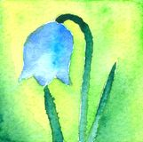 Little Blue Bell. Watercolor painting, created and painted by the photographer stock illustration