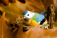 Little blue bird at the nest among the leafs Royalty Free Stock Photography