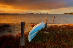 The little blue canoe. A blue canoe kayak upturned on the sandy shore full of fire sticks in bloom as a vibrant sunrise lights up the sky Stock Photos