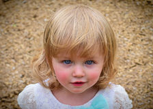 Little Blue Eyes Royalty Free Stock Images