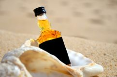 Little bottles whiskey in the big ocean shell stand on the sand closeup. Luxury alcoholic party in a nautical style on the shores stock image