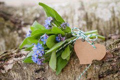 Little bouquet of forget-me-nots Stock Photography