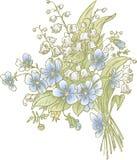Little bouquet Stock Image
