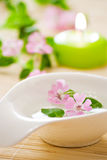 Little bowl and flowers Royalty Free Stock Photography
