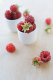 Little bowl of fresh raspberries Royalty Free Stock Images