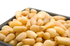 Little bowl with pine nuts Stock Photography