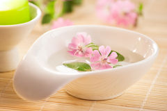 Little bowl of water and flowers Stock Photos