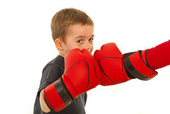 Little boxer boy fighting. And looking to camera isolated on white background Royalty Free Stock Photo