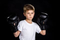 Little boxer portrait in black boxing gloves in open position.  Royalty Free Stock Photo
