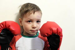 Little boxer. Portrait of a little boxer on the wall background Royalty Free Stock Photos