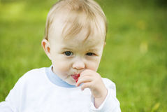 Little boy. The little boy outdoors eating red currants royalty free stock images