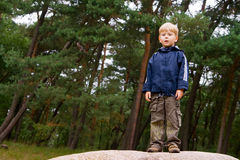 Little Boy. Portrait of a little boy standing in the forest Stock Images