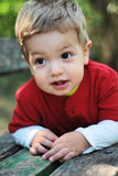 Little boy. Portrait with gorgeous little boy in the park Royalty Free Stock Images