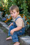Little boy. Looking in the camera Stock Photos