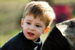 A little boy Stock Photography